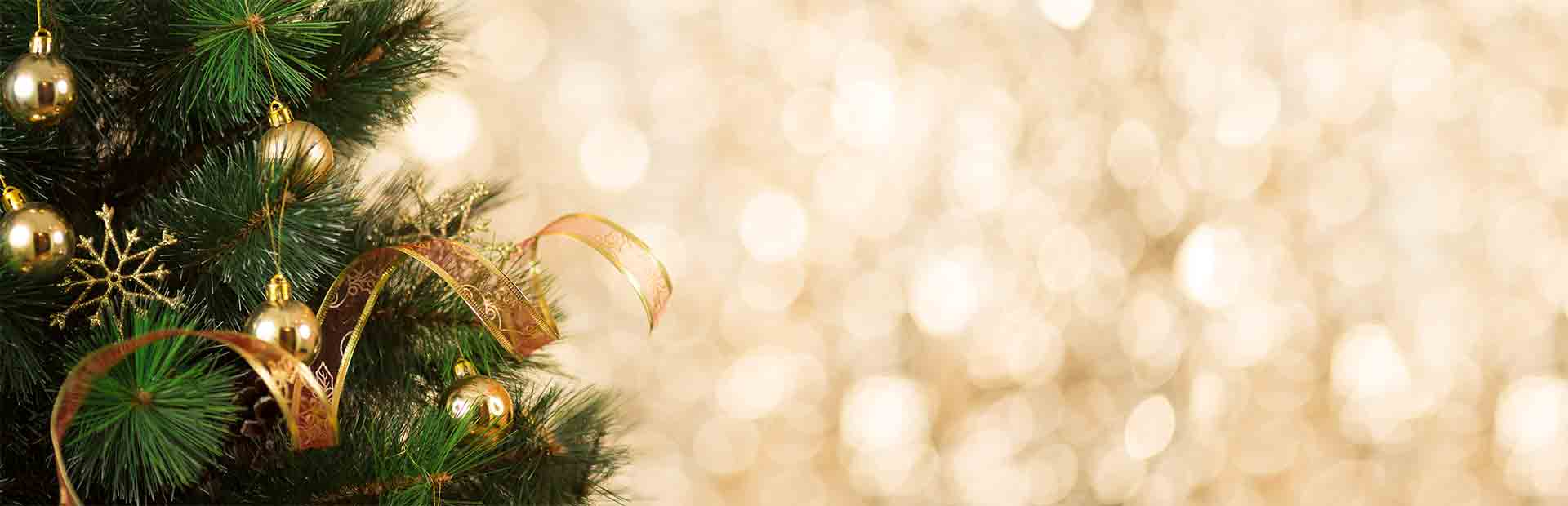 Background Music For Christmas Eve Jamendo Royalty Free