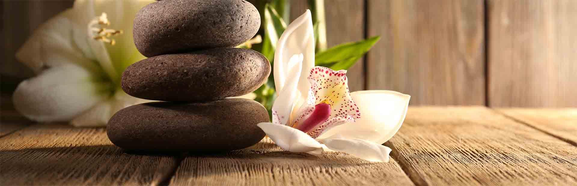 wellness spa free por